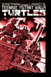 TEENAGE MUTANT NINJA TURTLES Issue #1
