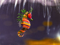200px-life_aquatic_seahorse.jpg