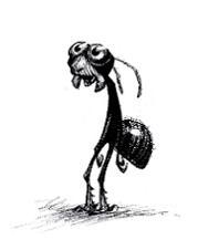 smallbugslifef