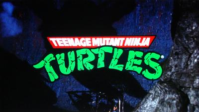 Turtles25-01