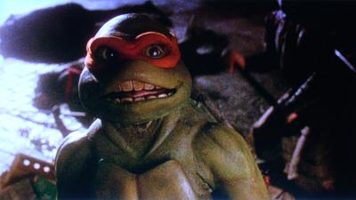 Turtles25-02