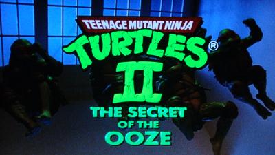 Turtles25-03