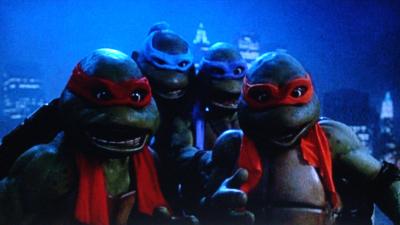 Turtles25-05