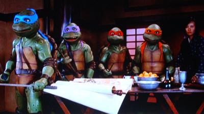 Turtles25-09